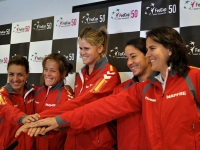 Fed Cup 2013
